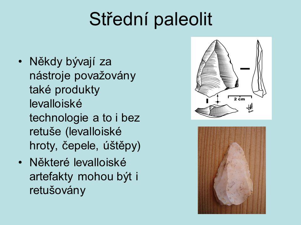 Střední paleolit Někdy bývají za nástroje považovány také produkty levalloiské technologie a to i bez retuše (levalloiské hroty, čepele, úštěpy) Někte