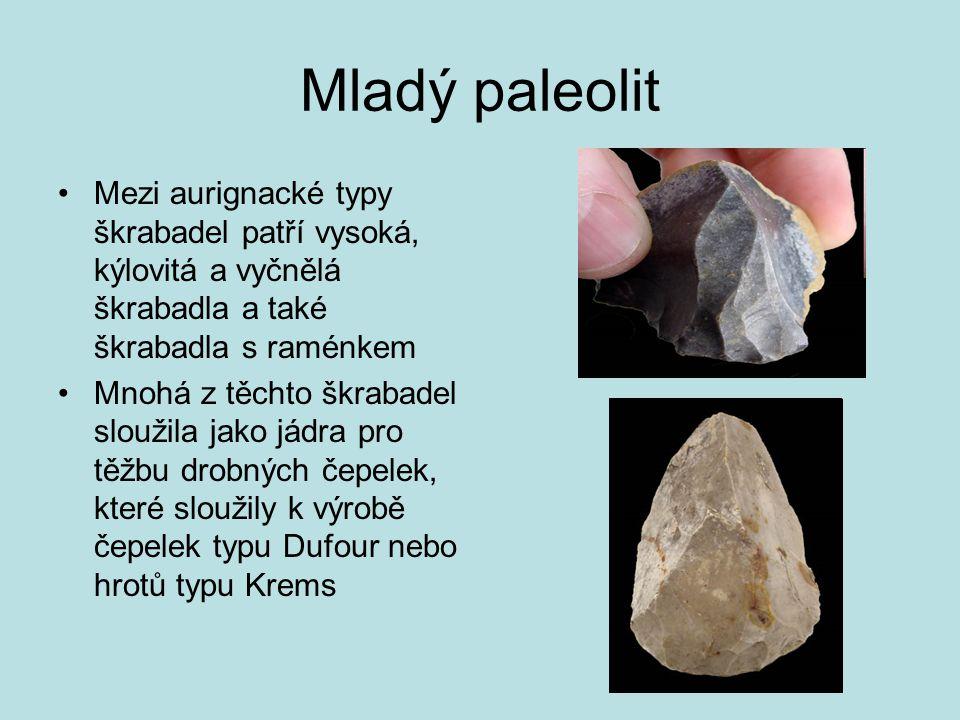 Mladý paleolit Mezi aurignacké typy škrabadel patří vysoká, kýlovitá a vyčnělá škrabadla a také škrabadla s raménkem Mnohá z těchto škrabadel sloužila