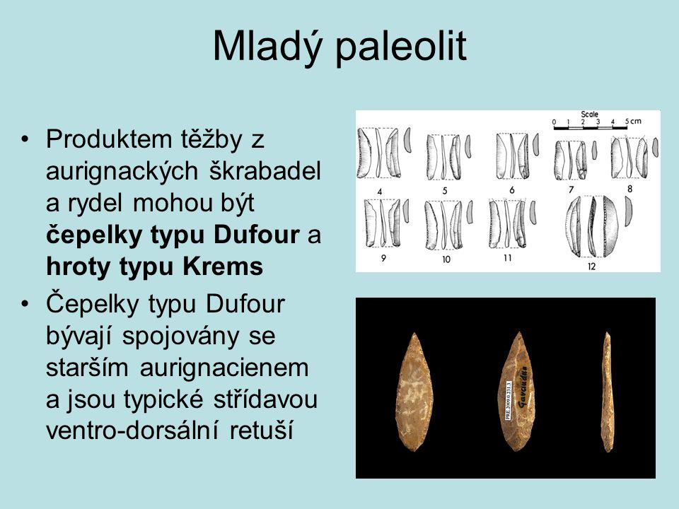 Mladý paleolit Produktem těžby z aurignackých škrabadel a rydel mohou být čepelky typu Dufour a hroty typu Krems Čepelky typu Dufour bývají spojovány