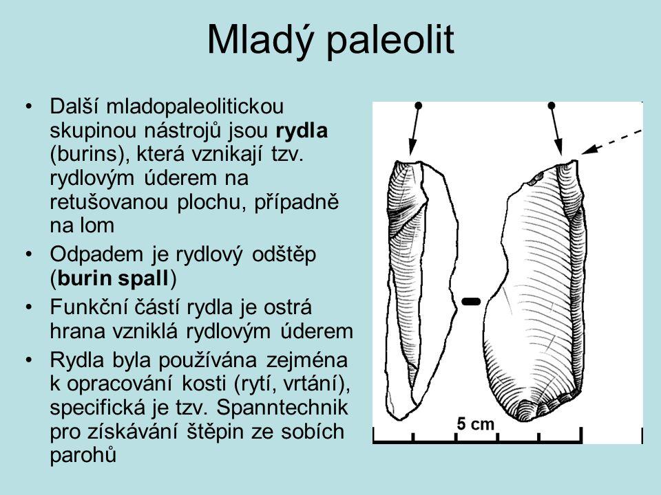 Mladý paleolit Další mladopaleolitickou skupinou nástrojů jsou rydla (burins), která vznikají tzv. rydlovým úderem na retušovanou plochu, případně na
