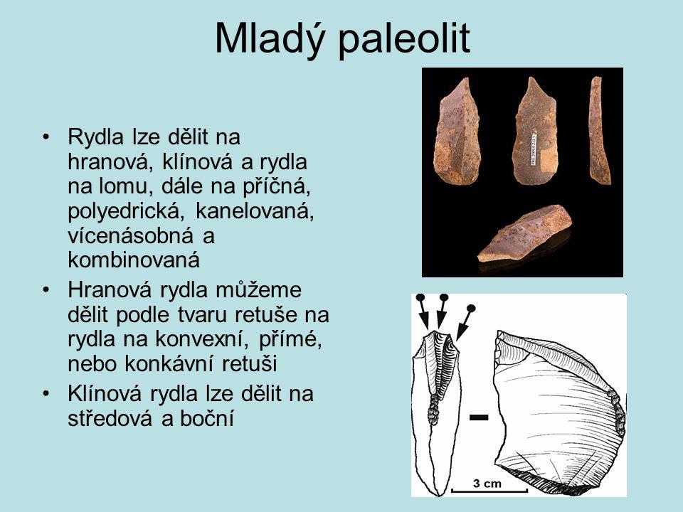 Mladý paleolit Rydla lze dělit na hranová, klínová a rydla na lomu, dále na příčná, polyedrická, kanelovaná, vícenásobná a kombinovaná Hranová rydla m