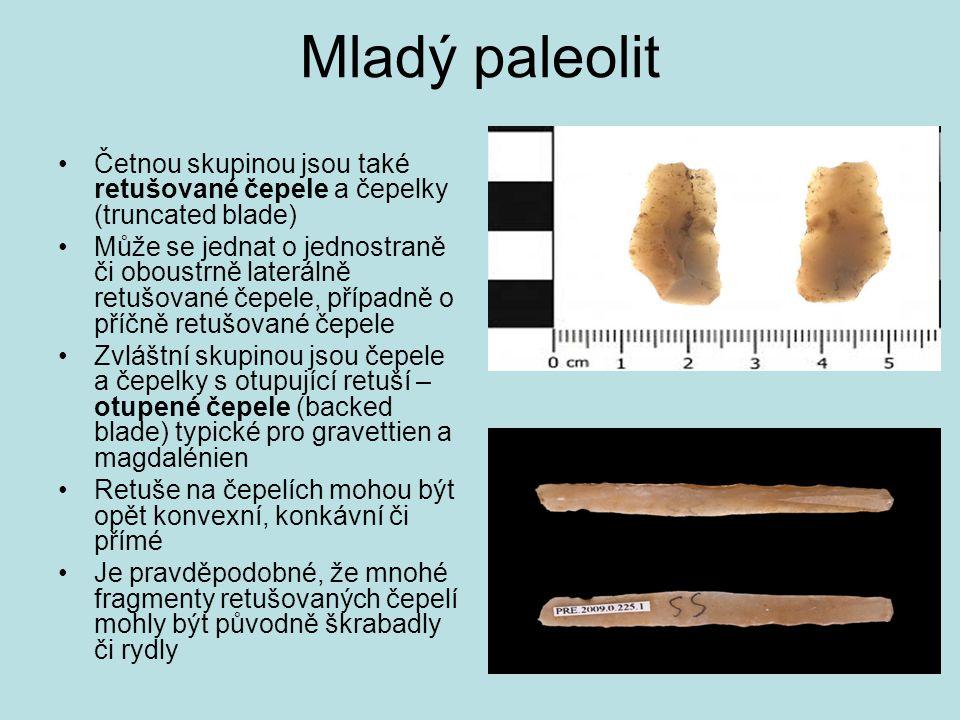 Mladý paleolit Četnou skupinou jsou také retušované čepele a čepelky (truncated blade) Může se jednat o jednostraně či oboustrně laterálně retušované
