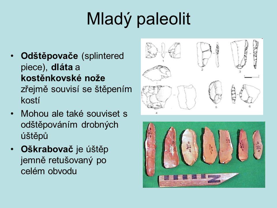 Mladý paleolit Odštěpovače (splintered piece), dláta a kostěnkovské nože zřejmě souvisí se štěpením kostí Mohou ale také souviset s odštěpováním drobn