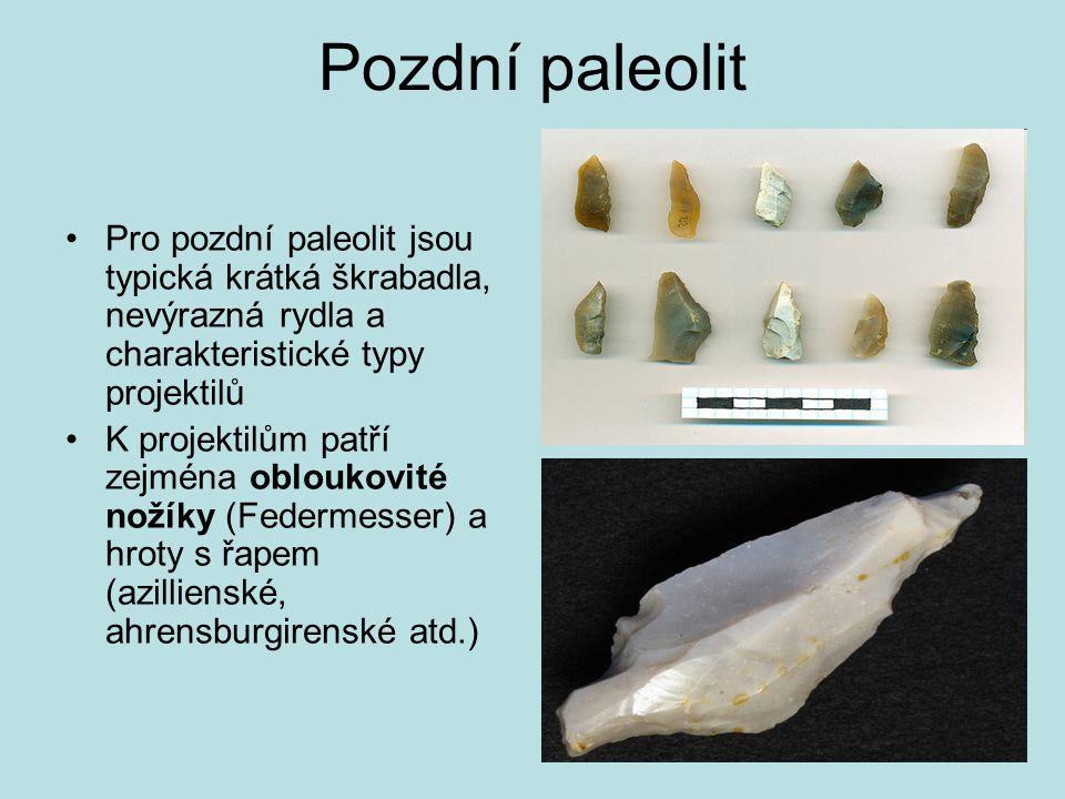 Pozdní paleolit Pro pozdní paleolit jsou typická krátká škrabadla, nevýrazná rydla a charakteristické typy projektilů K projektilům patří zejména oblo