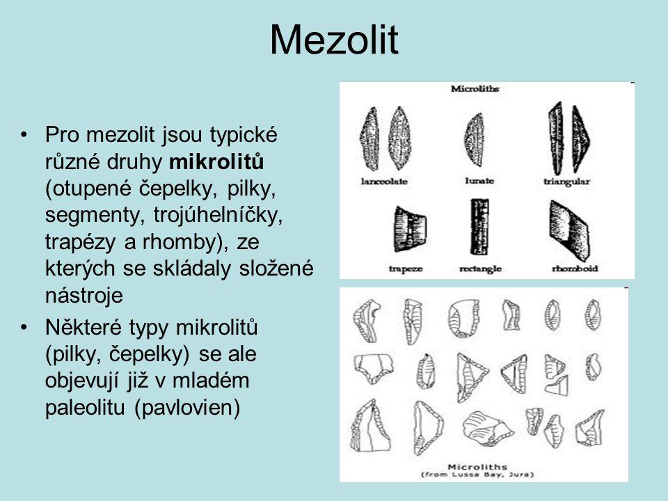 Mezolit Pro mezolit jsou typické různé druhy mikrolitů (otupené čepelky, pilky, segmenty, trojúhelníčky, trapézy a rhomby), ze kterých se skládaly slo