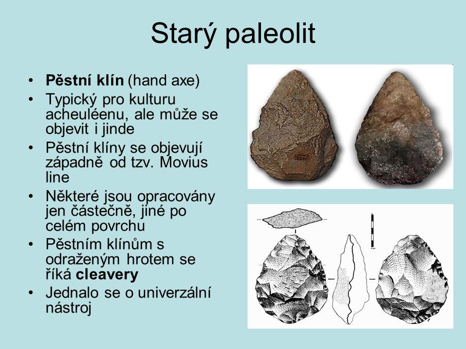 Starý paleolit Pěstní klín (hand axe) Typický pro kulturu acheuléenu, ale může se objevit i jinde Pěstní klíny se objevují západně od tzv. Movius line