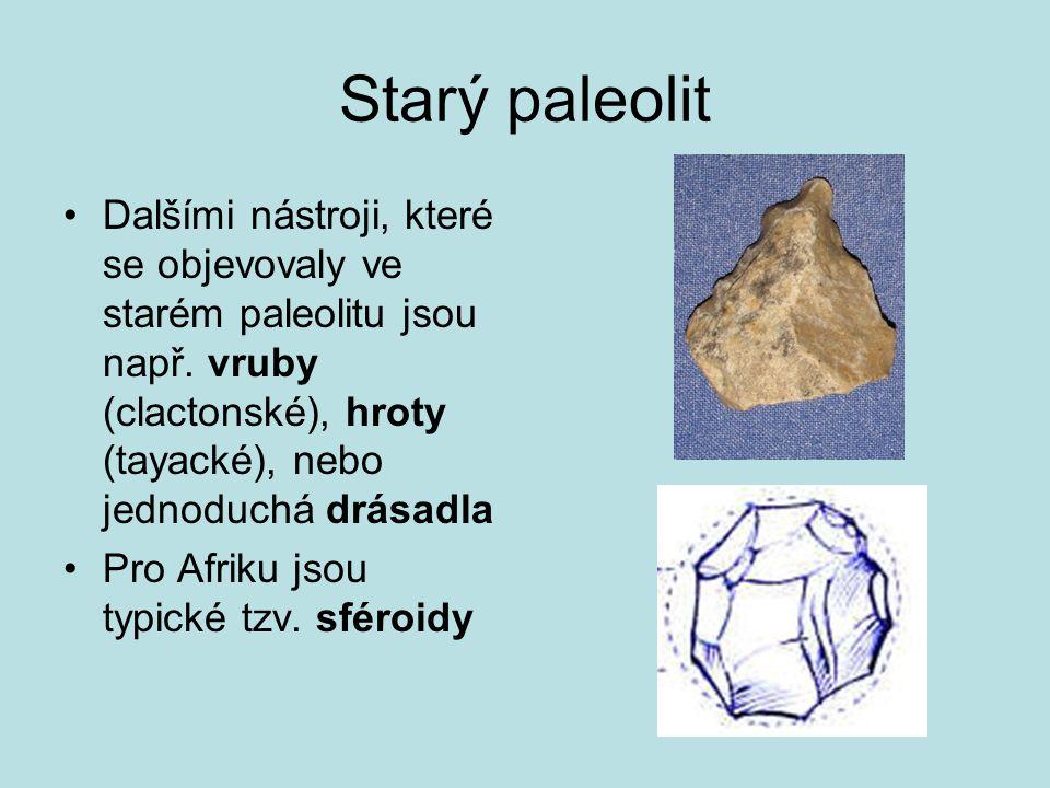 Starý paleolit Dalšími nástroji, které se objevovaly ve starém paleolitu jsou např. vruby (clactonské), hroty (tayacké), nebo jednoduchá drásadla Pro