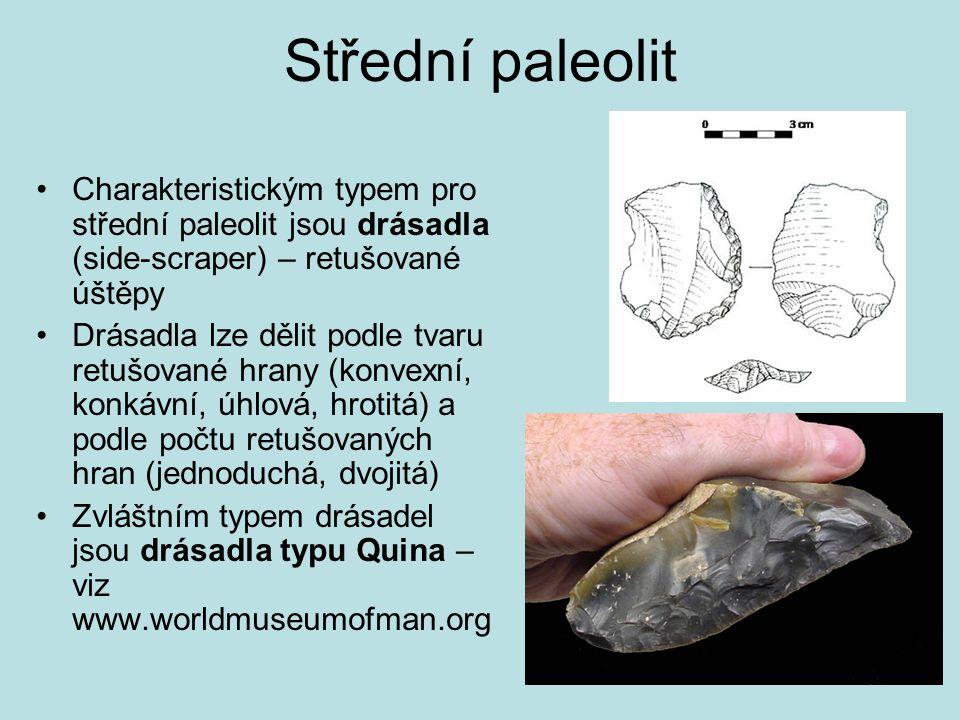 Střední paleolit Charakteristickým typem pro střední paleolit jsou drásadla (side-scraper) – retušované úštěpy Drásadla lze dělit podle tvaru retušova