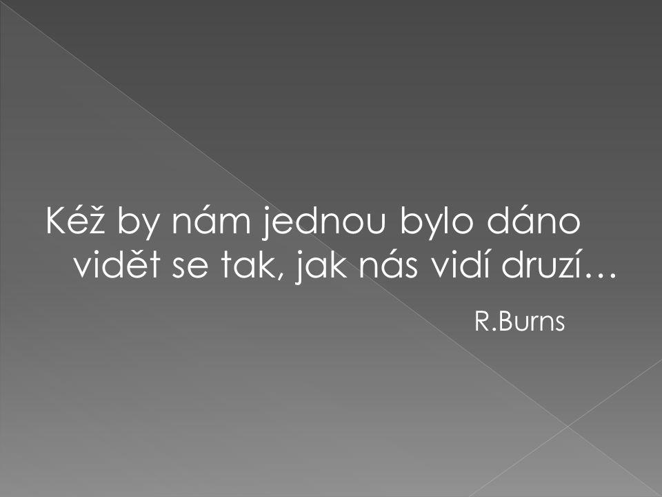 Kéž by nám jednou bylo dáno vidět se tak, jak nás vidí druzí… R.Burns