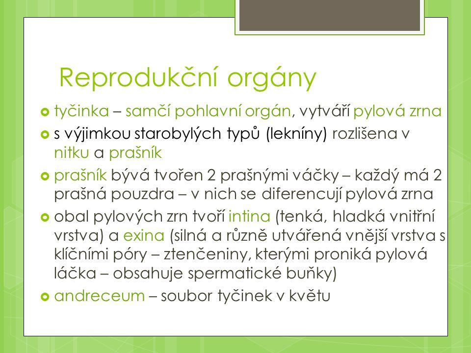 Reprodukční orgány  pestík – samičí pohlavní orgán, vznikl srůstem jednoho nebo více plodolistů  gyneceum – soubor plodolistů v jednom květu  pestík má 3 části: - blizna - vrcholová část, na ní se zachycují a klíčí pylová zrna - čnělka – střední část pestíku, může chybět - semeník - spodní část, uzavírá vajíčka, rozlišujeme semeník svrchní, spodní, vzácně i polospodní