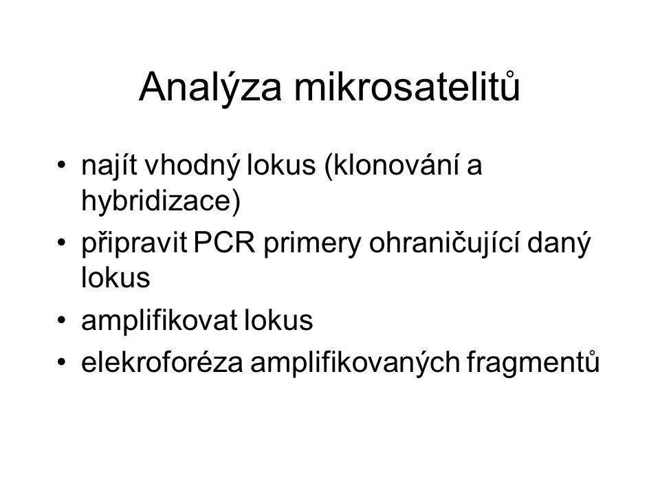 Analýza mikrosatelitů najít vhodný lokus (klonování a hybridizace) připravit PCR primery ohraničující daný lokus amplifikovat lokus elekroforéza ampli
