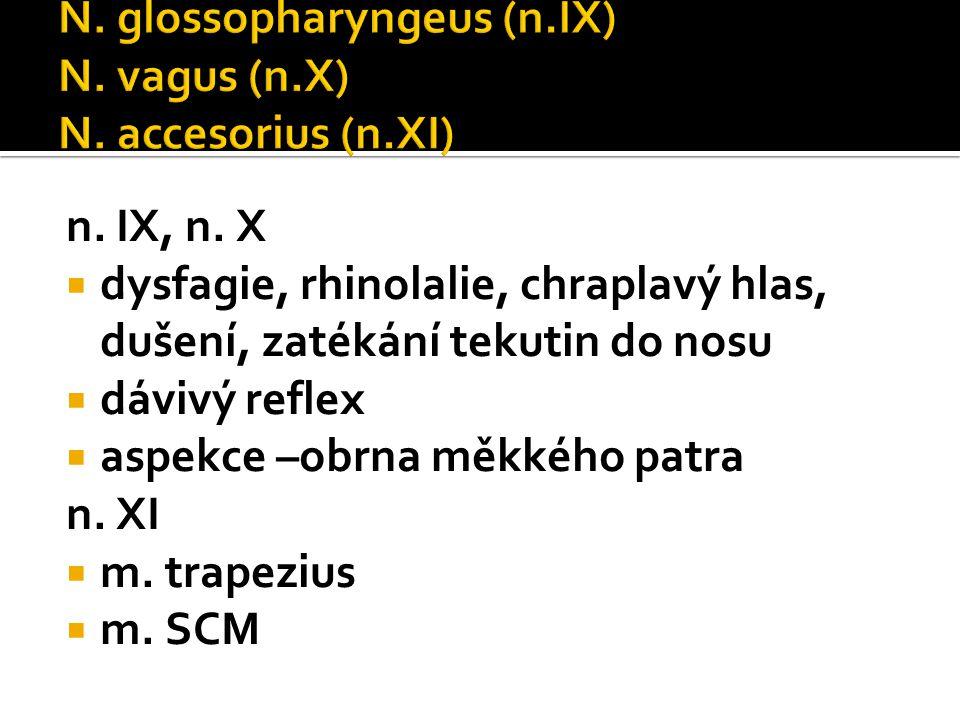 N. hypoglossus (n.XII)  Dysfagie, dysartrie  Plazení jazyka