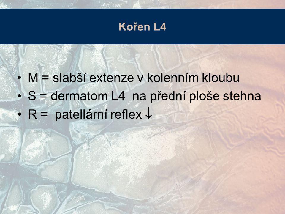 Kořen L4 M = slabší extenze v kolenním kloubu S = dermatom L4 na přední ploše stehna R = patellární reflex 
