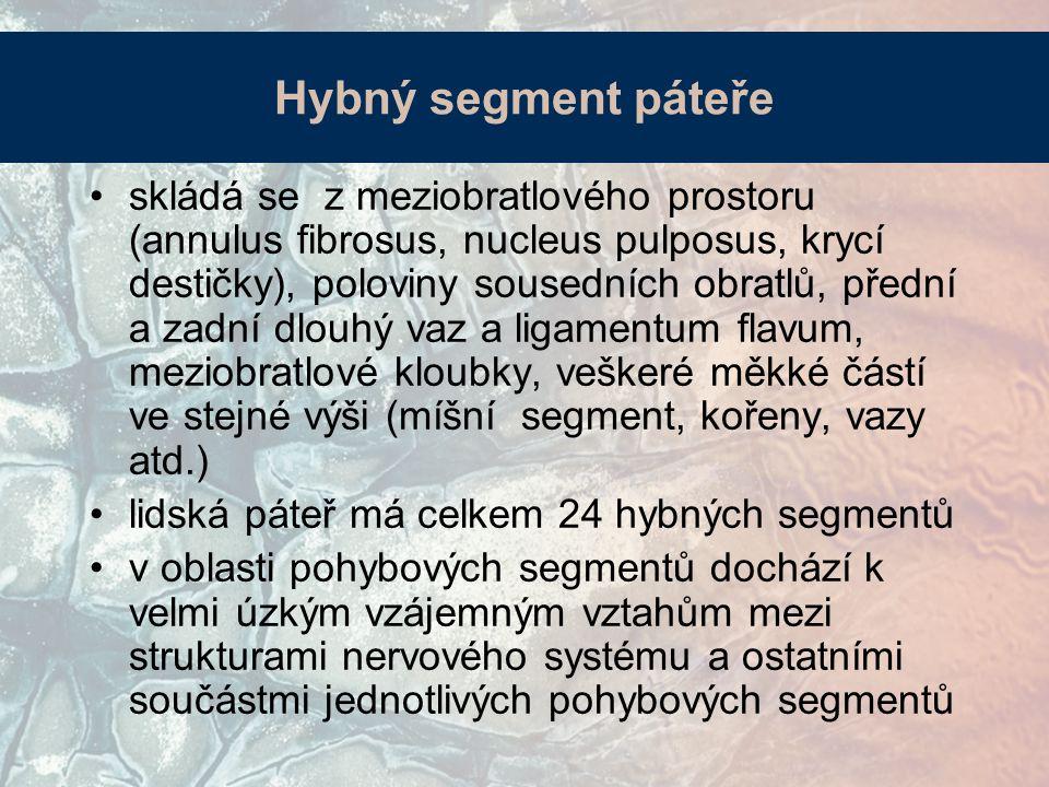 skládá se z meziobratlového prostoru (annulus fibrosus, nucleus pulposus, krycí destičky), poloviny sousedních obratlů, přední a zadní dlouhý vaz a li