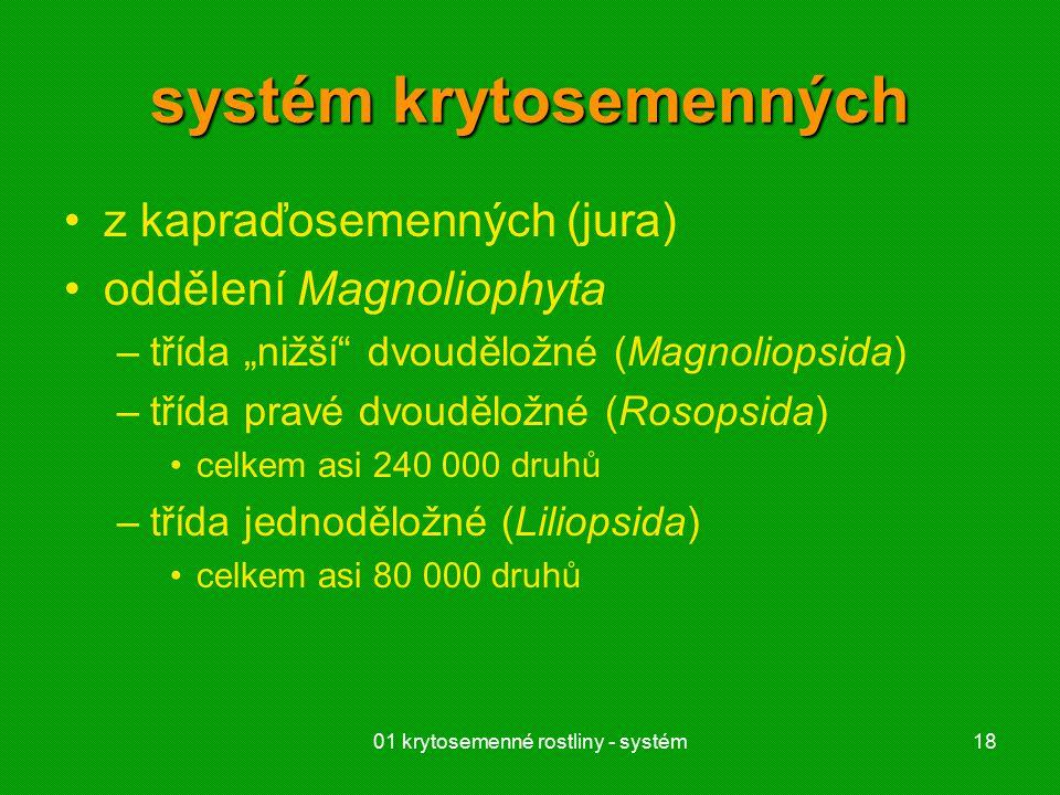 """01 krytosemenné rostliny - systém18 systém krytosemenných z kapraďosemenných (jura) oddělení Magnoliophyta –třída """"nižší dvouděložné (Magnoliopsida) –třída pravé dvouděložné (Rosopsida) celkem asi 240 000 druhů –třída jednoděložné (Liliopsida) celkem asi 80 000 druhů"""