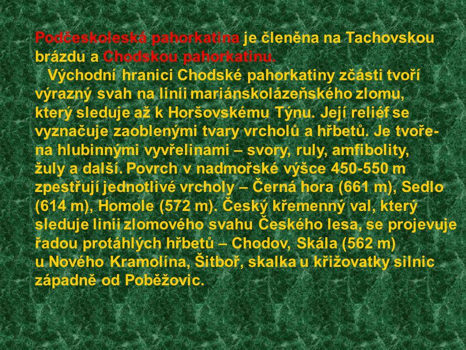 Podčeskoleská pahorkatina je členěna na Tachovskou brázdu a Chodskou pahorkatinu.