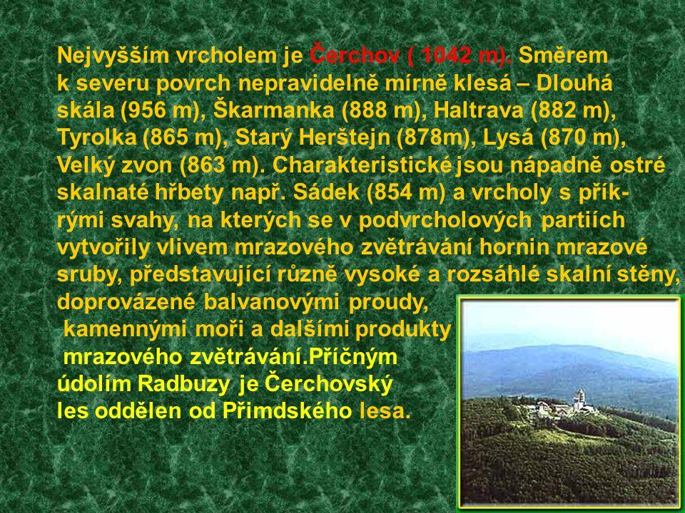Nejvyšším vrcholem je Čerchov ( 1042 m). Směrem k severu povrch nepravidelně mírně klesá – Dlouhá skála (956 m), Škarmanka (888 m), Haltrava (882 m),