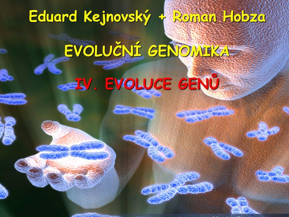 Původ nových genů: Přeskupování exonů (exon shuffling) exony různých genů jsou spojeny dohromady za vzniku nového genu exon může být duplikován za vzniku nové exon-intronové struktury kombinace domén různých proteinů – mozaikový protein Mechanizmy: Ektopická rekombinace Nelegitimní rekombinace