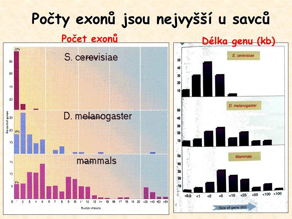 Počty exonů jsou nejvyšší u savců Počet exonů Délka genu (kb)