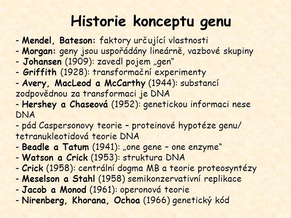 Historie konceptu genu - Mendel, Bateson: faktory určující vlastnosti - Morgan: geny jsou uspořádány lineárně, vazbové skupiny - Johansen (1909): zave