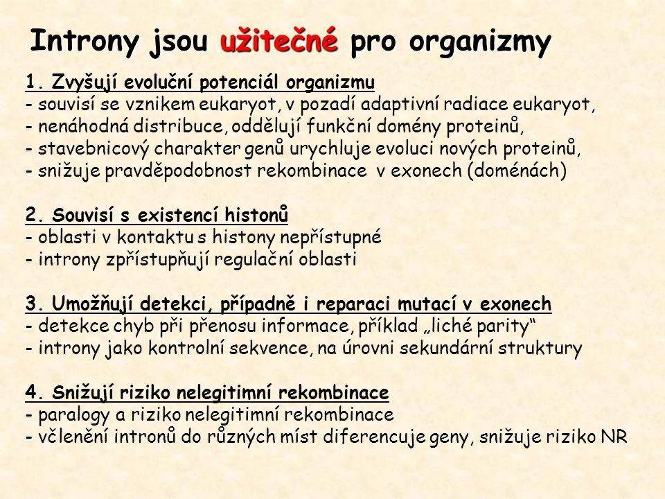 Introny jsou užitečné pro organizmy 1. Zvyšují evoluční potenciál organizmu - souvisí se vznikem eukaryot, v pozadí adaptivní radiace eukaryot, - nená