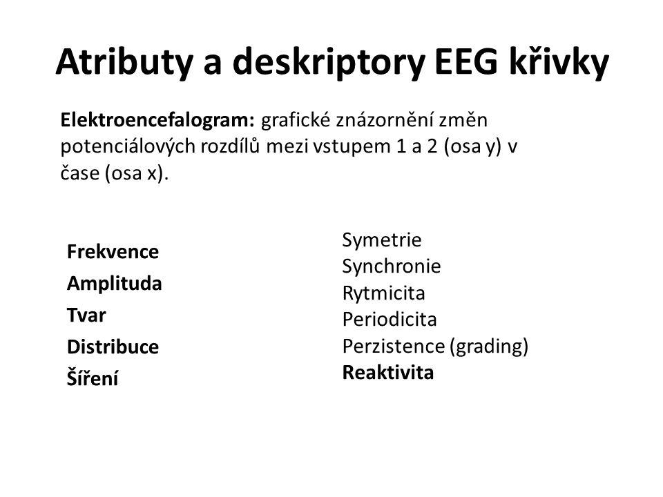 Atributy a deskriptory EEG křivky Frekvence Amplituda Tvar Distribuce Šíření Symetrie Synchronie Rytmicita Periodicita Perzistence (grading) Reaktivit