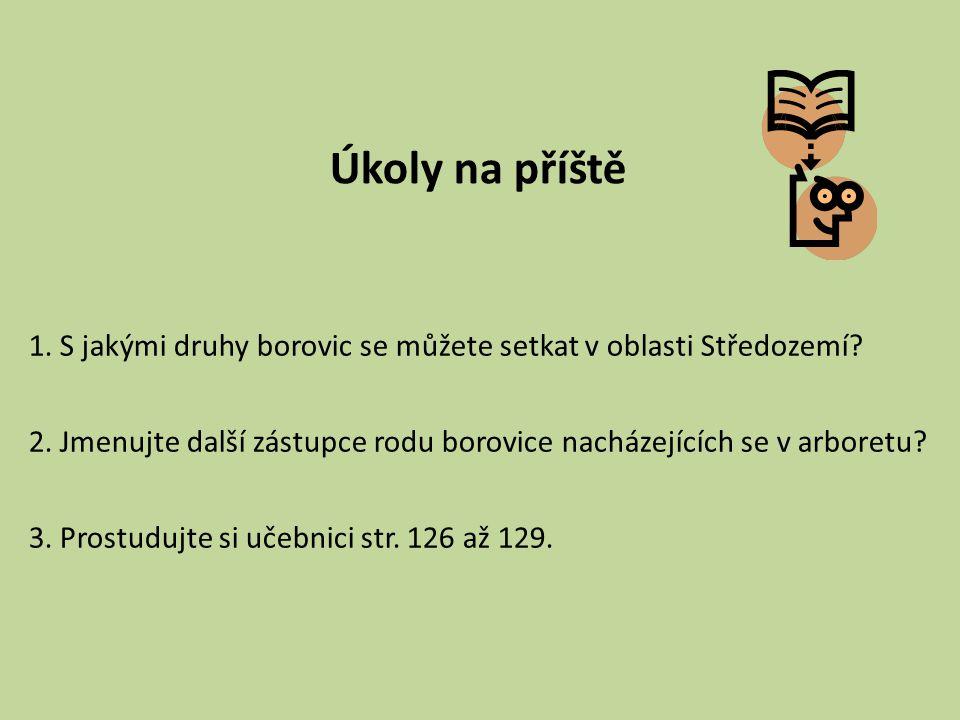 Úkoly na příště 1. S jakými druhy borovic se můžete setkat v oblasti Středozemí? 2. Jmenujte další zástupce rodu borovice nacházejících se v arboretu?