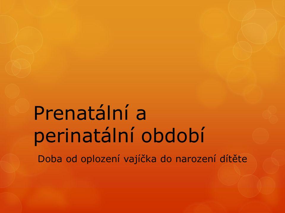 Prenatální a perinatální období Doba od oplození vajíčka do narození dítěte