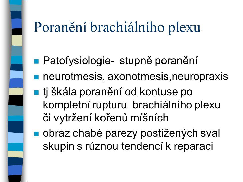 Poranění brachiálního plexu klinický obraz n Chabá paresa až plegie- lokalisovaná či kompletní na celé horní končetině n obrna horní typ ( Duchenne-Erb) 80% poranění plexu a kořenů C5-6, ochrnutí svalstva pletence ramenního a paže n obrna dolní typ (Klumpkeové) C8-TH1 ochrnutí svalstva předloktí a ruky n smíšený typ - C5-TH1