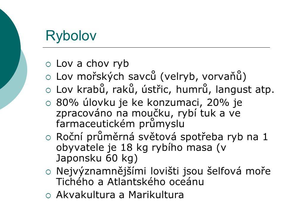Lesnictví 1.Severní lesní pás – 2 mld. ha, Rusko, USA, Kanada; 2/3 jehličnaté lesy 2.