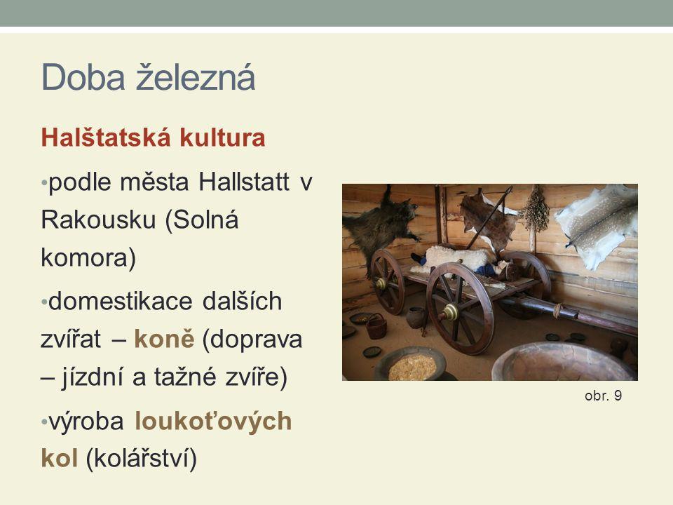 Doba železná Halštatská kultura podle města Hallstatt v Rakousku (Solná komora) domestikace dalších zvířat – koně (doprava – jízdní a tažné zvíře) výr