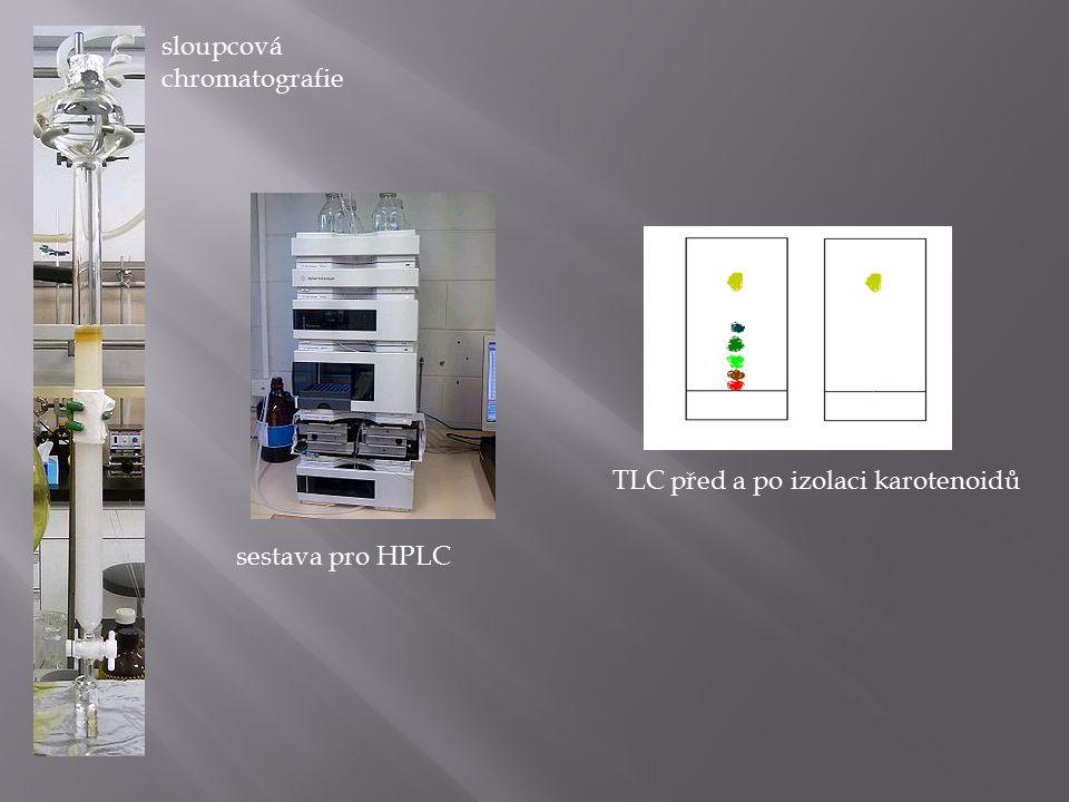 TLC před a po izolaci karotenoidů sestava pro HPLC sloupcová chromatografie