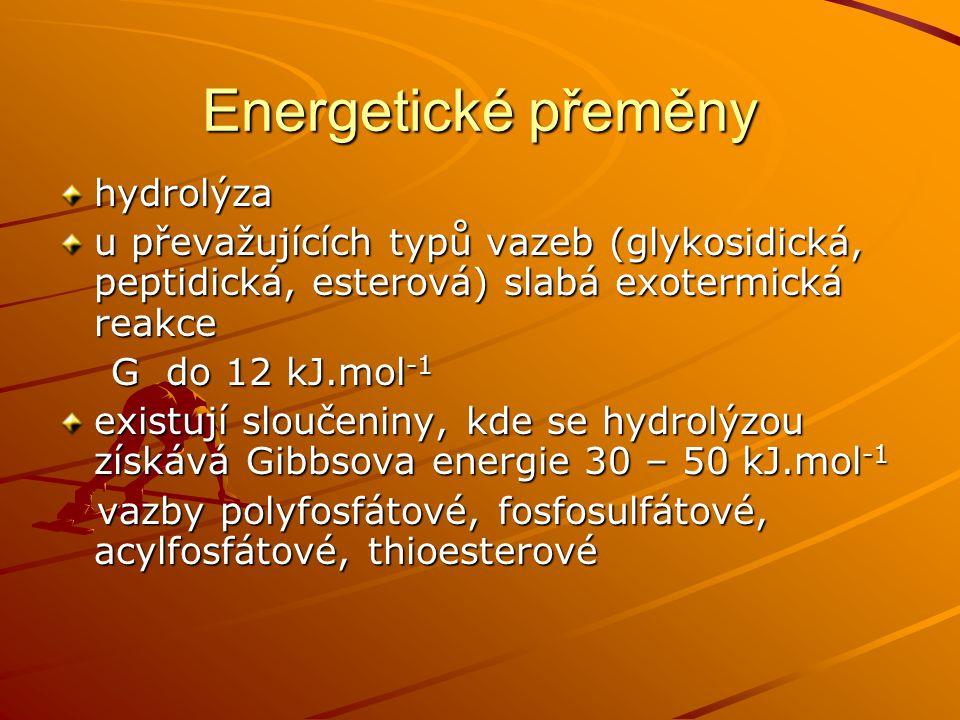 Energetické přeměny hydrolýza u převažujících typů vazeb (glykosidická, peptidická, esterová) slabá exotermická reakce G do 12 kJ.mol -1 G do 12 kJ.mo