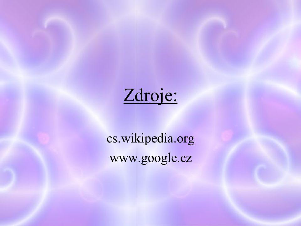 Zdroje: cs.wikipedia.org www.google.cz