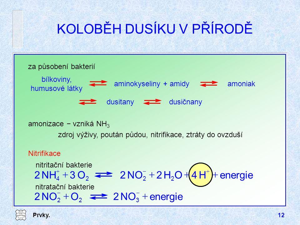 Prvky.12 KOLOBĚH DUSÍKU V PŘÍRODĚ za působení bakterií amoniak bílkoviny, humusové látky aminokyseliny + amidy dusitanydusičnany amonizace − vzniká NH