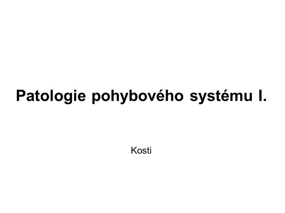 Choroby kostí 1) metabolické kostní choroby - osteoporóza - osteomalacie a rachitis - infantilní skorbut - fibrózní osteodystrofie - renální osteopatie - Pagetova choroba 2) fraktury 3) záněty - hnisavá osteomyelitida - tbc osteomyelitida 4) nádory - primární - sekundární (metastázy)