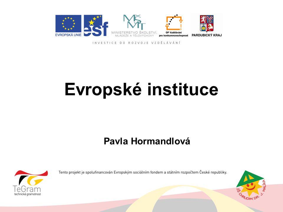 Evropské instituce Pavla Hormandlová VIII.B, 2008