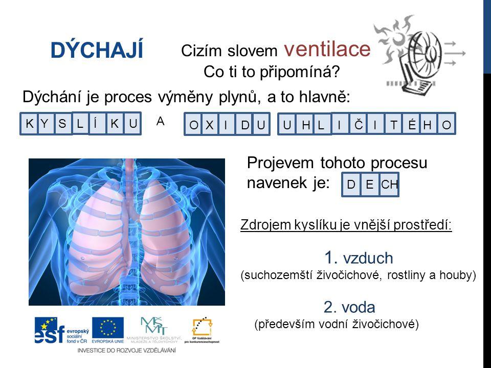 DÝCHAJÍ Dýchání je proces výměny plynů, a to hlavně: A K Y S L Í K U O X I D U U H L I Č I T É H O Cizím slovem ventilace.
