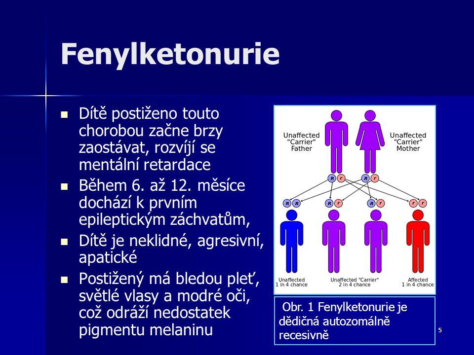 Fenylketonurie Dítě postiženo touto chorobou začne brzy zaostávat, rozvíjí se mentální retardace Během 6. až 12. měsíce dochází k prvním epileptickým