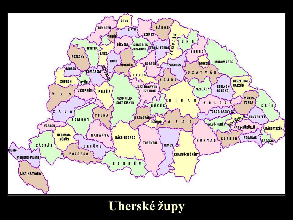 Uherské župy