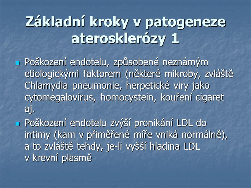 Základní kroky v patogeneze aterosklerózy 1 Poškození endotelu, způsobené neznámým etiologickými faktorem (některé mikroby, zvláště Chlamydia pneumoni
