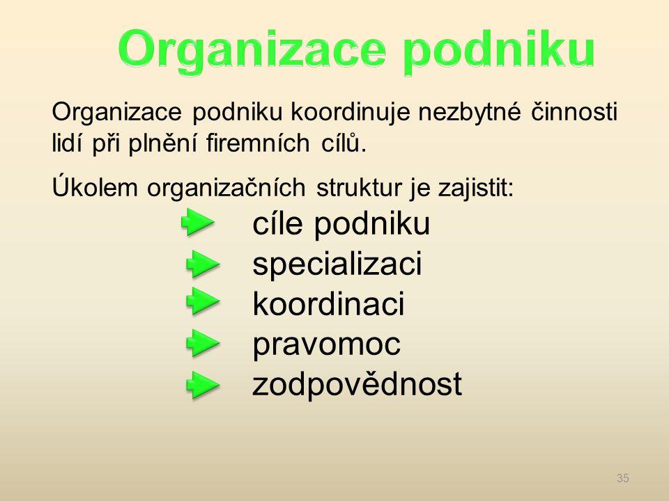 Organizace podniku koordinuje nezbytné činnosti lidí při plnění firemních cílů. Úkolem organizačních struktur je zajistit: cíle podniku specializaci k