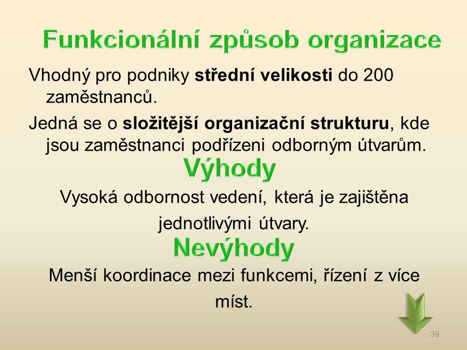Vhodný pro podniky střední velikosti do 200 zaměstnanců. Jedná se o složitější organizační strukturu, kde jsou zaměstnanci podřízeni odborným útvarům.