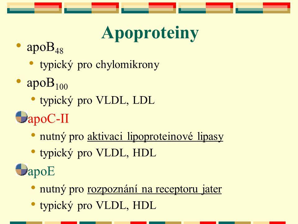 Apoproteiny apoB 48 typický pro chylomikrony apoB 100 typický pro VLDL, LDL apoC-II nutný pro aktivaci lipoproteinové lipasy typický pro VLDL, HDL apo
