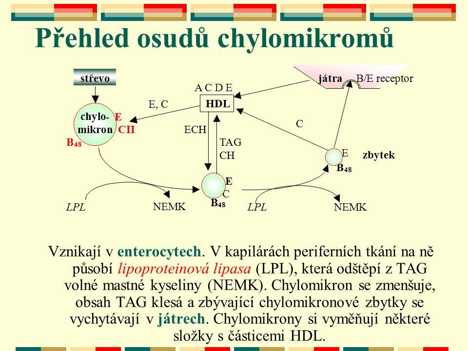Vznikají v enterocytech. V kapilárách periferních tkání na ně působí lipoproteinová lipasa (LPL), která odštěpí z TAG volné mastné kyseliny (NEMK). Ch
