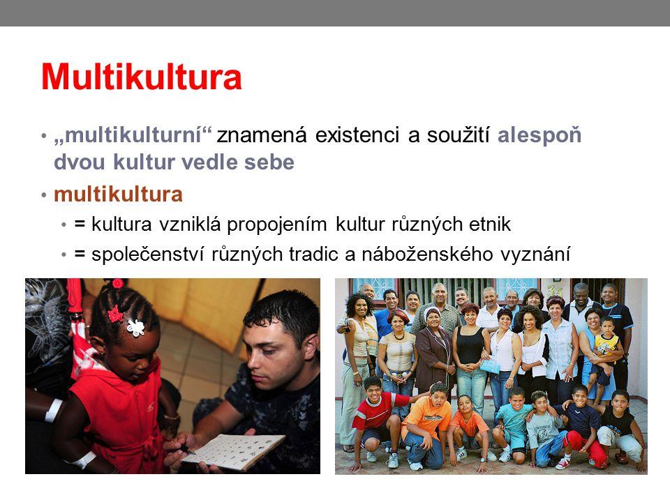 """Multikultura """"multikulturní"""" znamená existenci a soužití alespoň dvou kultur vedle sebe multikultura = kultura vzniklá propojením kultur různých etnik"""