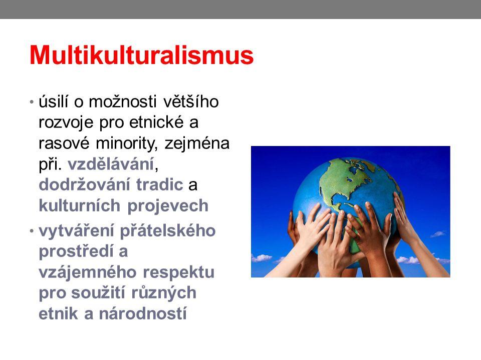 Multikulturalismus úsilí o možnosti většího rozvoje pro etnické a rasové minority, zejména při. vzdělávání, dodržování tradic a kulturních projevech v