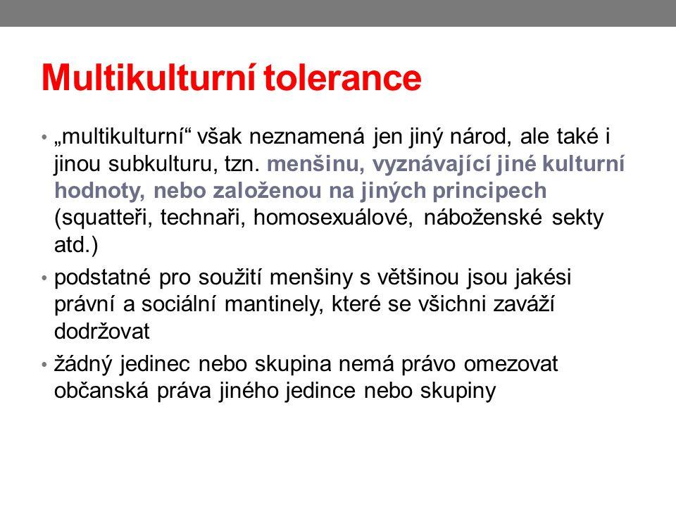 """Multikulturní tolerance """"multikulturní"""" však neznamená jen jiný národ, ale také i jinou subkulturu, tzn. menšinu, vyznávající jiné kulturní hodnoty, n"""