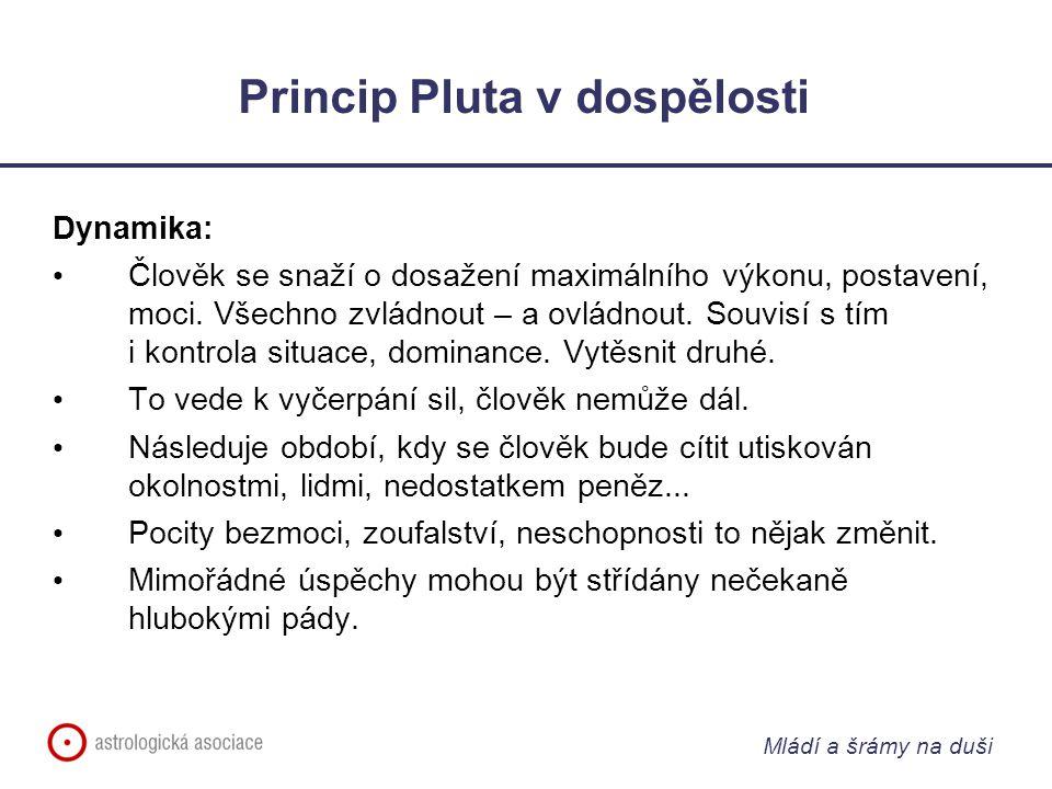 Mládí a šrámy na duši Princip Pluta v dospělosti Dynamika: Člověk se snaží o dosažení maximálního výkonu, postavení, moci.