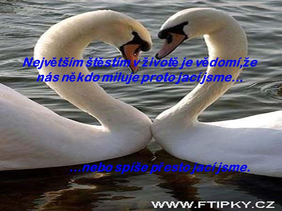 Nejv ě tším št ě stím v ž ivot ě je v ě domí, ž e nás n ě kdo miluje proto jací jsme......nebo spíše p ř esto jací jsme.